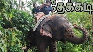 Elephant Ride in Thekkady - Kerala