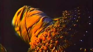 The Awakening 1980 TV trailer #2