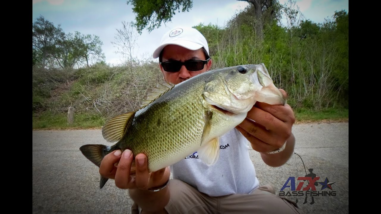 Selma hughes park bass fishing lake austin texas for Youtube bass fishing
