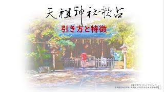 天祖神社歌占の引き方と特徴