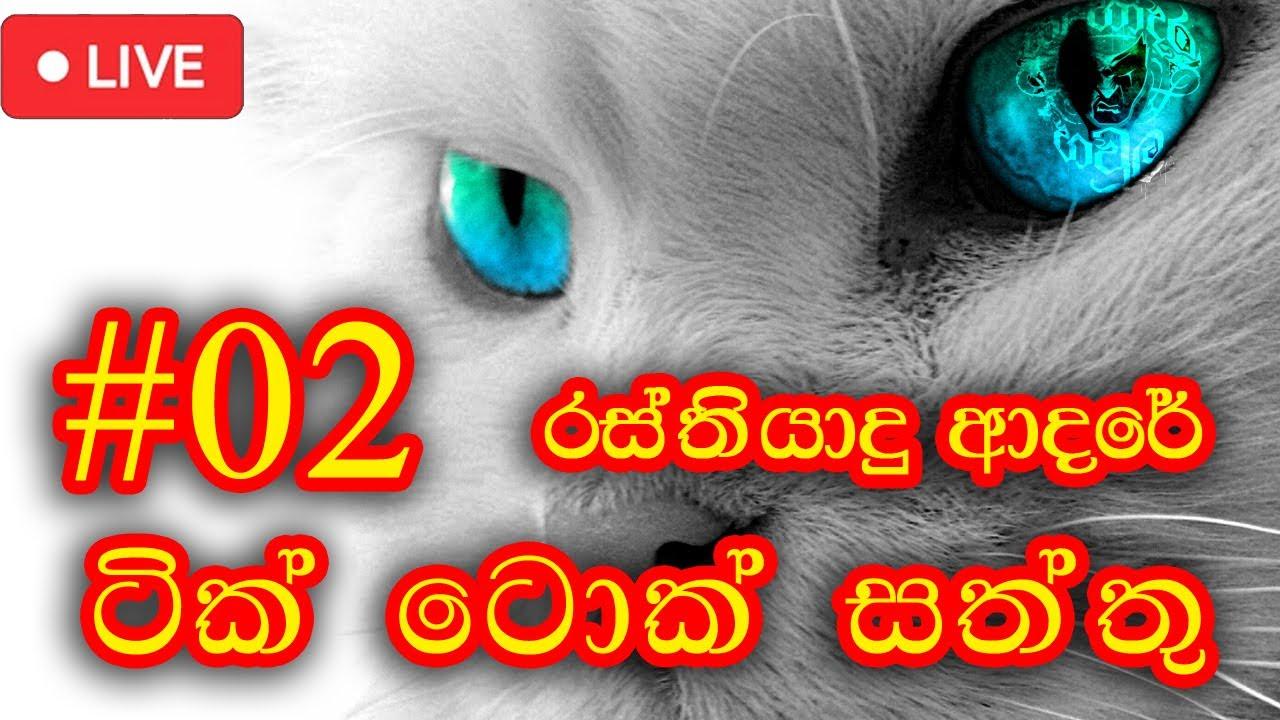 Download Rasthiyadu adare - Tik Tok Aniamal Version #2