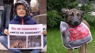 Не бойся, я с тобой: митинг в защиту животных
