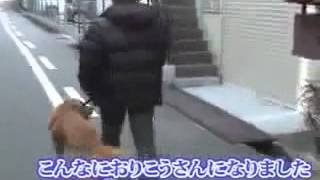 詳細はこちら⇒http://www.infotop.jp/click.php?aid=257620&iid=38183 ...