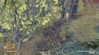 Fallout 76 trolling with freckerwecker , typmitMG reassira and viirus17