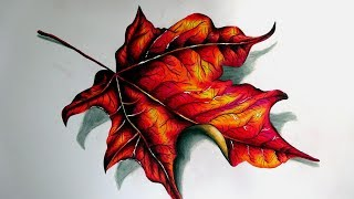 How To Draw: Autumn Leaves (Speed Drawing)