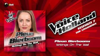 Pleun Bierbooms - Writings On The Wall (The Voice of Holland 2016/2017 Liveshow 1 Audio)