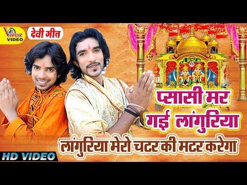 Languriya Mero Chatar Ki Matar Karega || लांगुरिया मेरो चटर की मटर करेगो || 2018 New Mata Bhajan