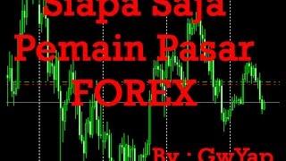 Siapa Saja Pemain Pasar Forex?