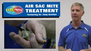 Air Sac Mite Treatment