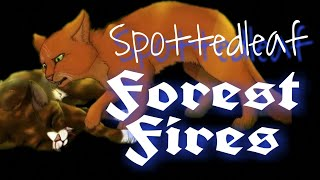 Коты-воители / Пестролистая { Forest fires }.