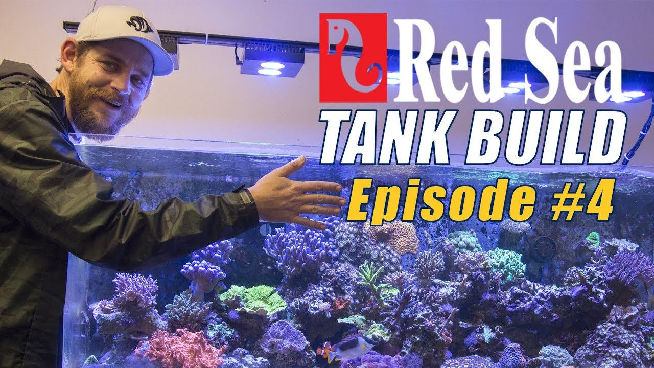 Reefer Deluxe 525 XL Tank Build #4: GHL ProfiLux 4 Controller Setup and Mounting Thumbnail