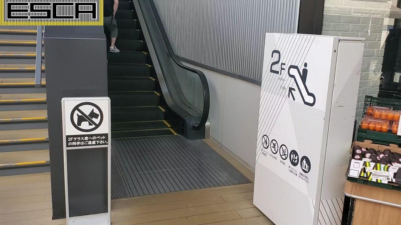 クイーンズ伊勢丹 仙川店 外エスカレーター 1F-2F 三菱 QUEEN'S ISETAN Escalator Mitsubishi