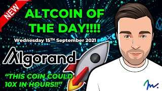 ALTCOIN OF THE DAY! {ALGO / ALGORAND} 10X COIN SET FOR HUGE PUMP!! // ALTCOINS TO BUY RIGHT NOW!!
