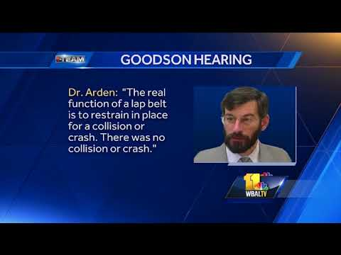 Video: Doctor in Goodson defense claims Freddie Gray's death was accidental