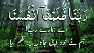 Dua of Adam(A.S)/beautiful dua    qurani duain   quran urdu whatsapp status   dua status urdu