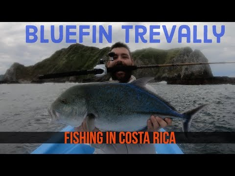 Pura Vida Costa Rica Inshore Fishing Day 2