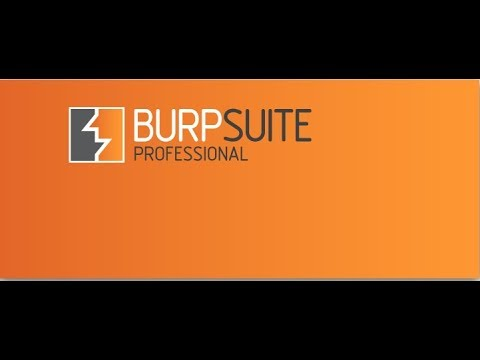 Hacking Tutorials 26 - Burp Suite (01 Introduction)