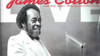 JAMES COTTON - Eyesight to the Blind. Live at Antone