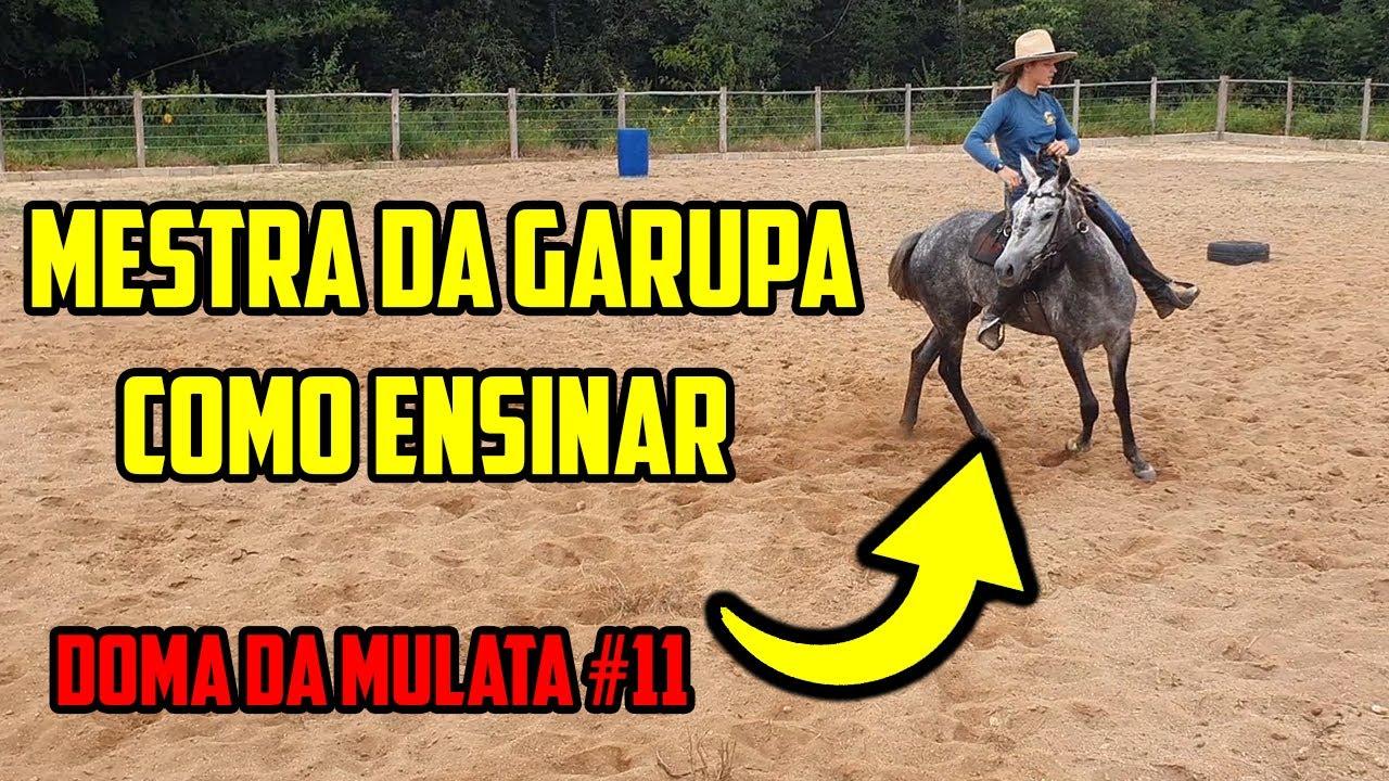 MESTRA DA GARUPA Como Ensinar o POTRO - DOMA DA MULATA #11