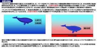 東京大学海洋研究所のクジラの浮沈呼吸追跡 written by Mana Utsunomiya