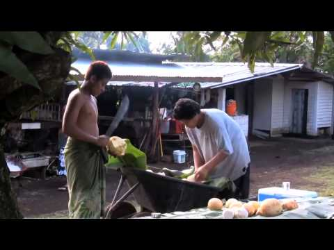 warriors born  american samoans in the u s  military