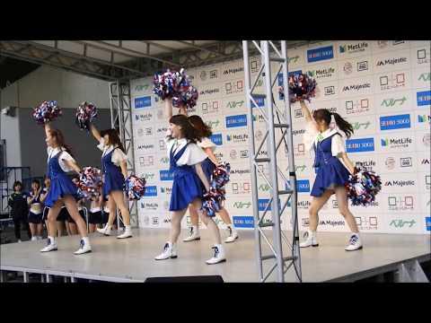 東京ヤクルトスワローズ「Passion」-We Are The Swallows- 交流戦 メットライフドーム