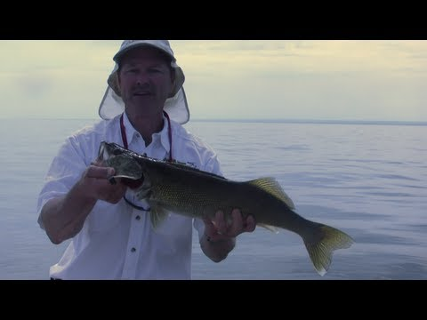 Tips On How To Troll For Walleyes Using Spoons - Trolling For Freshwater Walleye