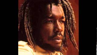 Peter Tosh Hammer