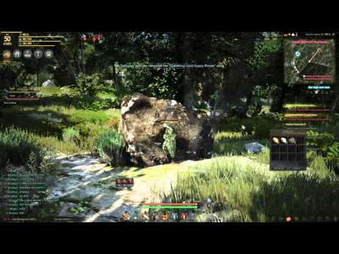 Black Desert Online - How To Find Zinc, Gold And Other Rare Ores