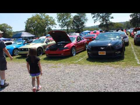 American Muscle Mustang Show 8/15/2015