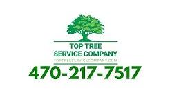 Tree Service Lilburn, GA  - 470-217-7517