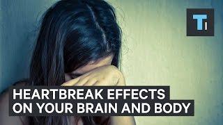 Heartbreak effects on your brain and body