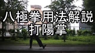 八極拳用法解説 打陽掌