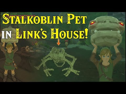 Stalkoblin PET in Link's House! Skull Heads are CUTE & FUN in Zelda Breath of the Wild