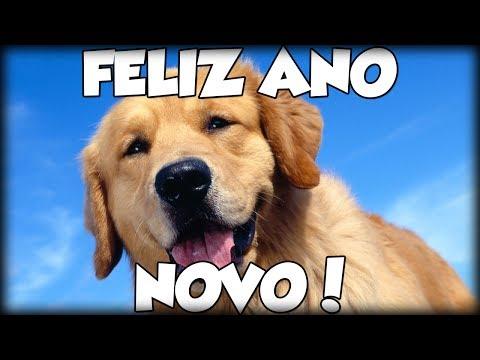 Feliz Ano Novo Ftmeu Cachorro