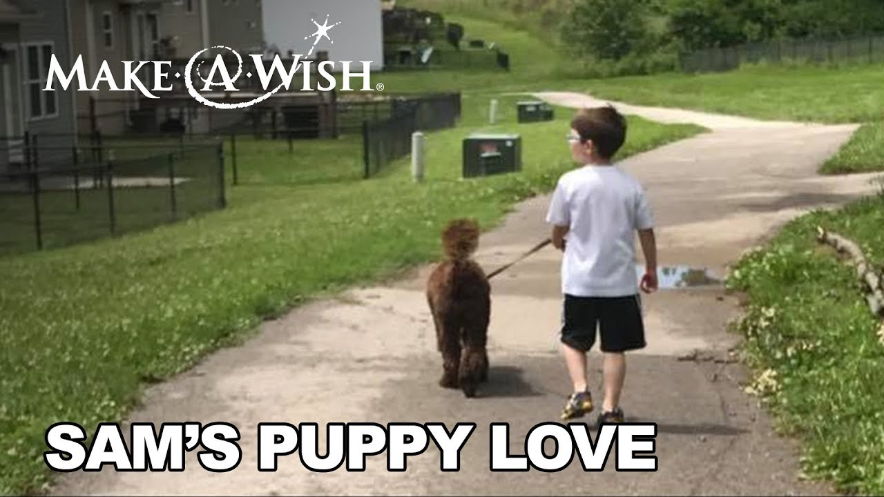 Sam Patiently Waited for Puppy Love | Make-A-Wish Missouri