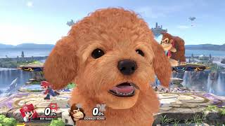 Super Smash Bros. Ultimate - ALL Assist Trophies!