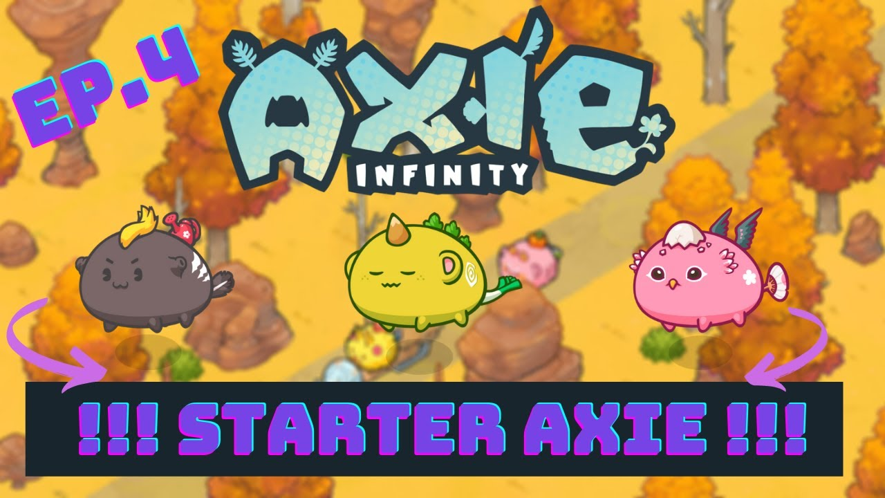 Axie infinity - How to เลือกซื้อ Axie งบไม่เกิน 20,000 บาท   Axie How to ep.4-1