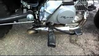 pot double sous moteur sur Trex 125 skyteam
