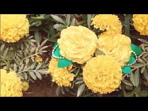 D.Y.I. | Satin Marigold Flower Hair tie