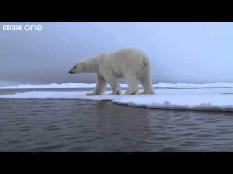 TED Ed: Svalbard, Norway