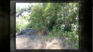 80 Acres Shasta County Land, Redding Land, Real Estate, Property & Redding CA Land For Sale