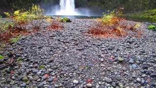 adventure oregon abiqua falls hike near scotts mills oregon