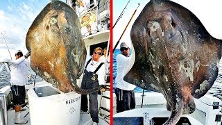 5 Most Mysterious Creatures Caught In Florida!