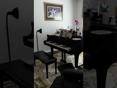 Local Piano & Theory Lessons Teacher | Ildiko Skeldon Piano Studio