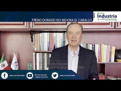CONSULTORES INTERNACIONALES   FRENO DORADO NO MEJORA EL CABALLO