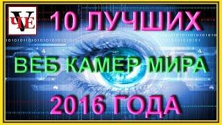 видео самые интересные веб камеры мира