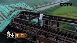 《乡土中国》 20200405 驭木有道|CCTV农业
