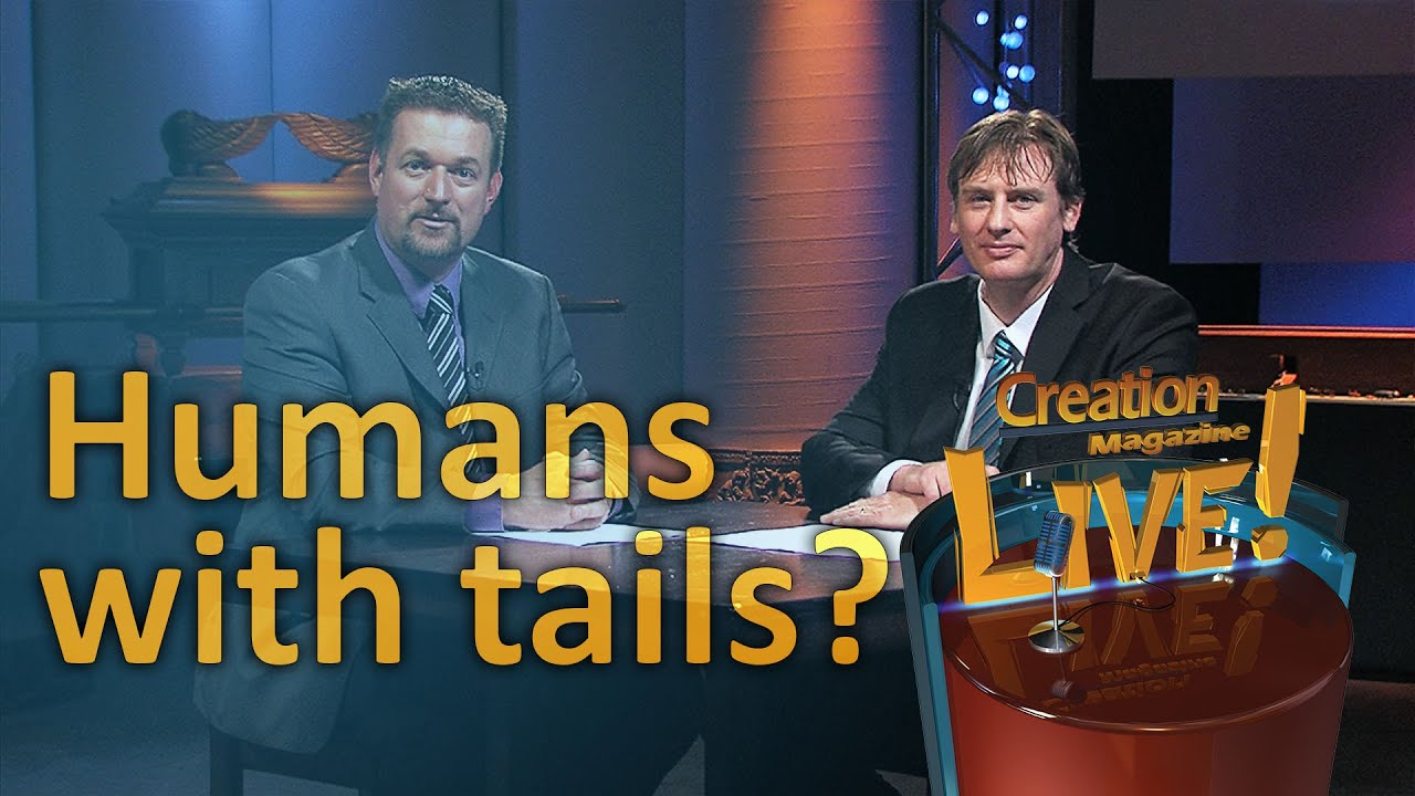 Humans with tails? (Creation Magazine LIVE! 5-03) - YouTube