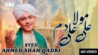 NEW HEART TOUCHING KALAM 2020 | SYED AHMED SHAH QADRI | ALI MOLA ALI DHAM | ODS PRODUCTION NAAT